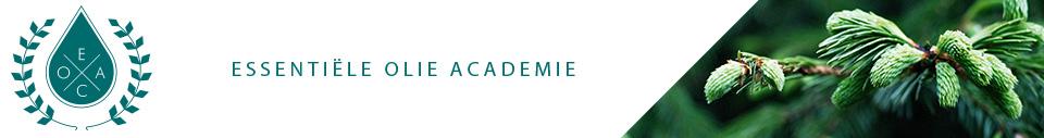 De Essentiële Olie Academie